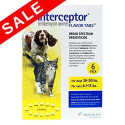 Interceptor for Dogs For Large Dogs